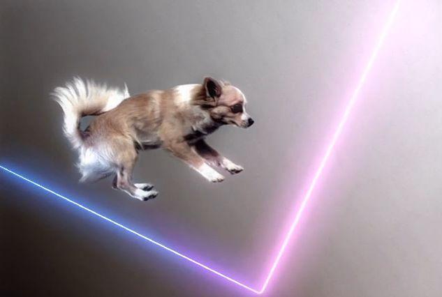 летающие собакчки под музыку и лазерное шоу, лазеры двух цветов