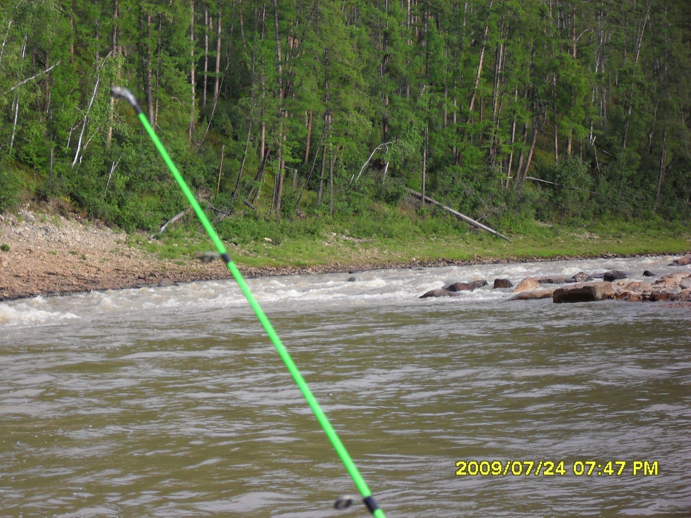река кура рыбалка